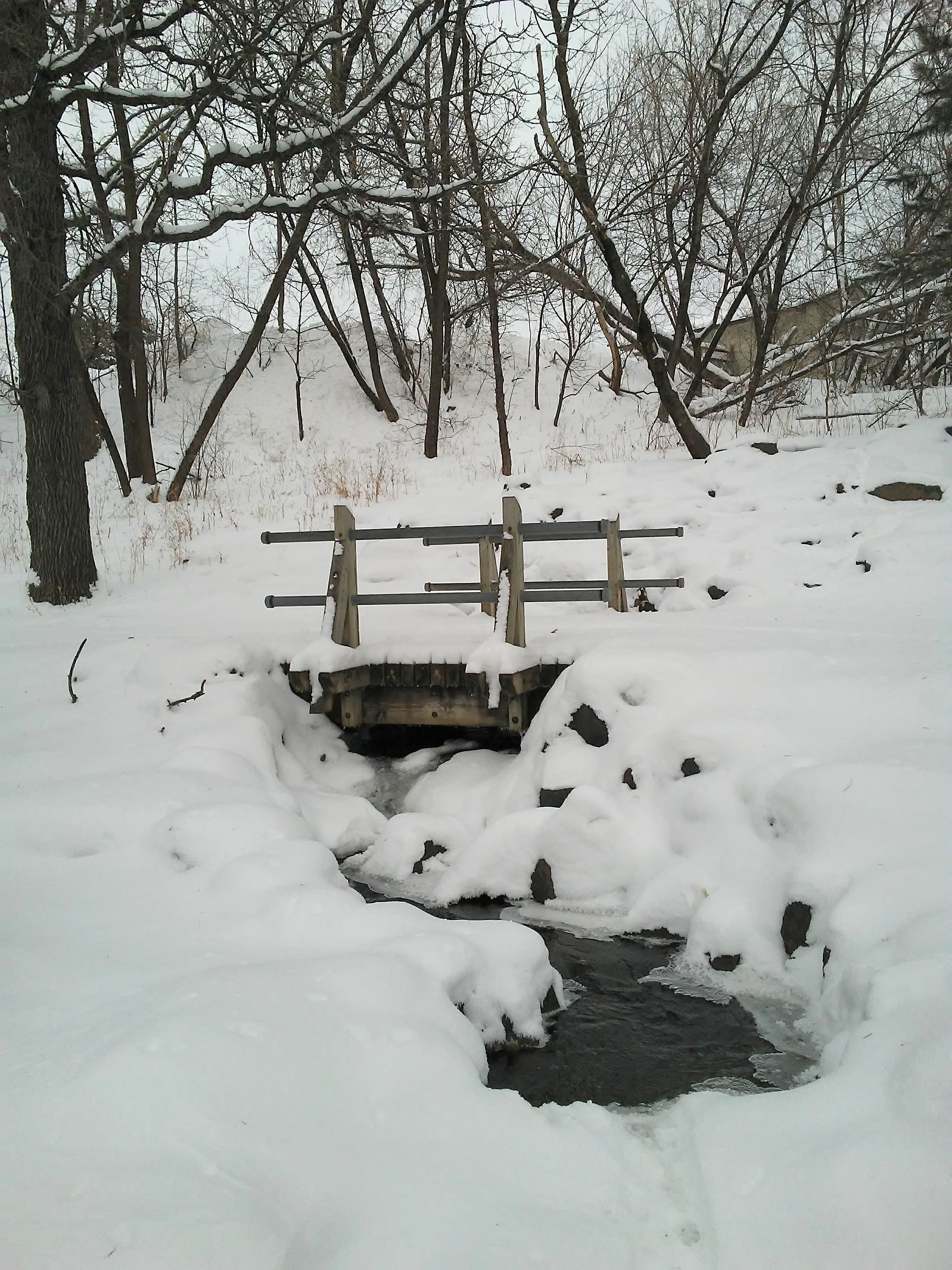 wood bridge, trees, snow, water.