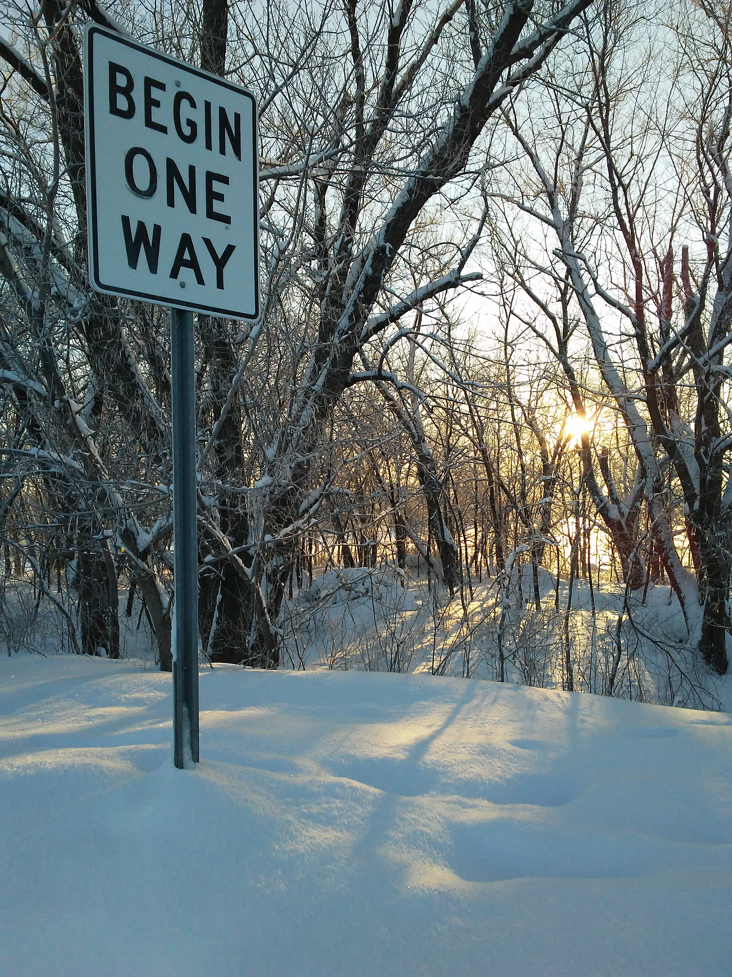"""Begin One Way"" street sign and sunrise behind snow covered trees"