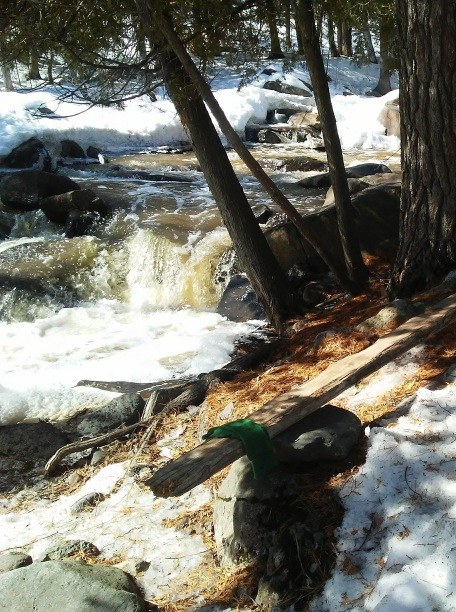 green mittens on a wood bench next to trees and a river with snow in the background