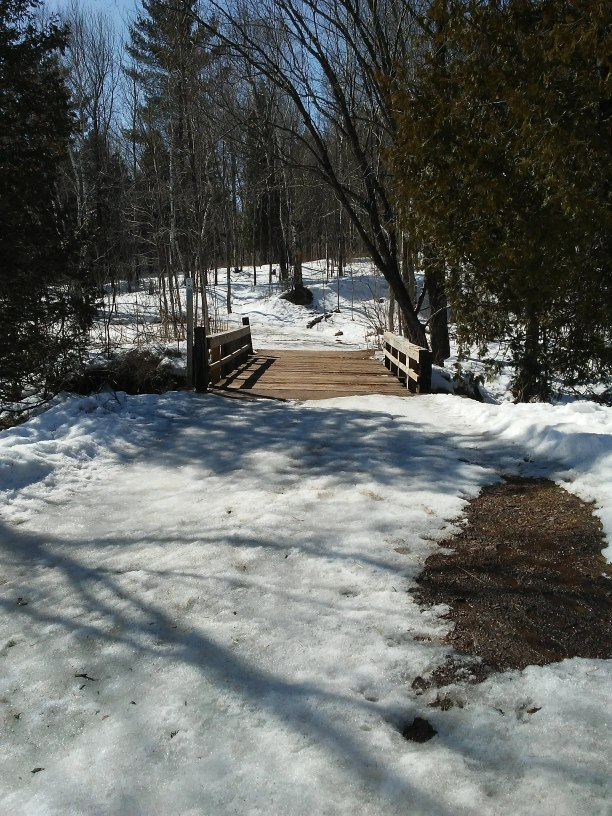 wood bridge and snow and trees