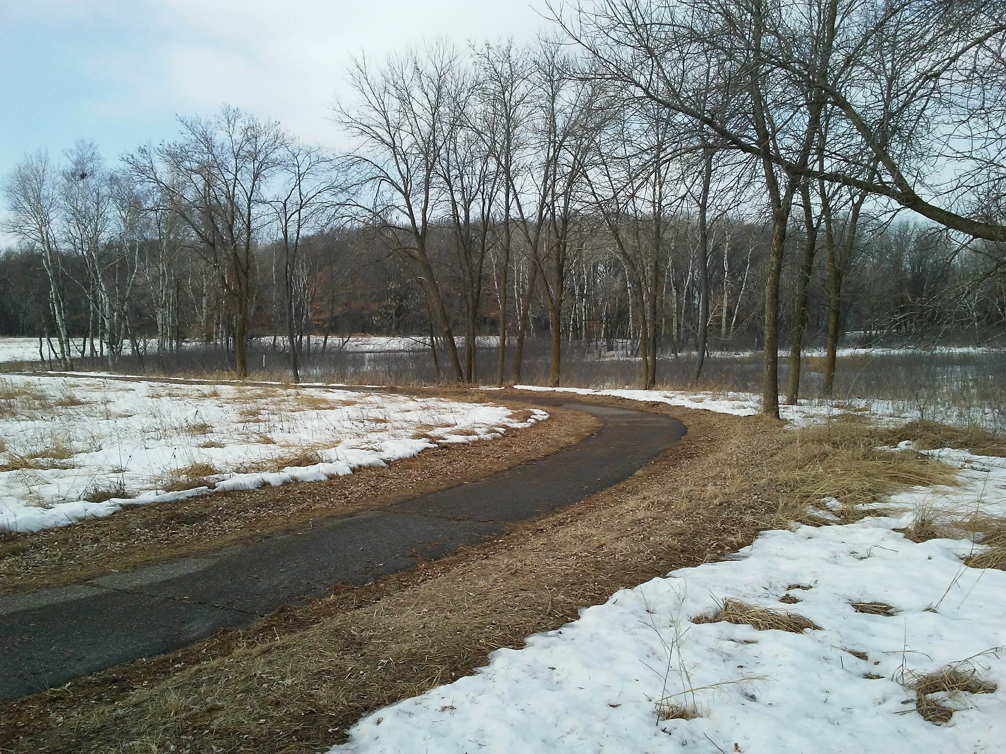 paved trail winding toward trees in background in winter