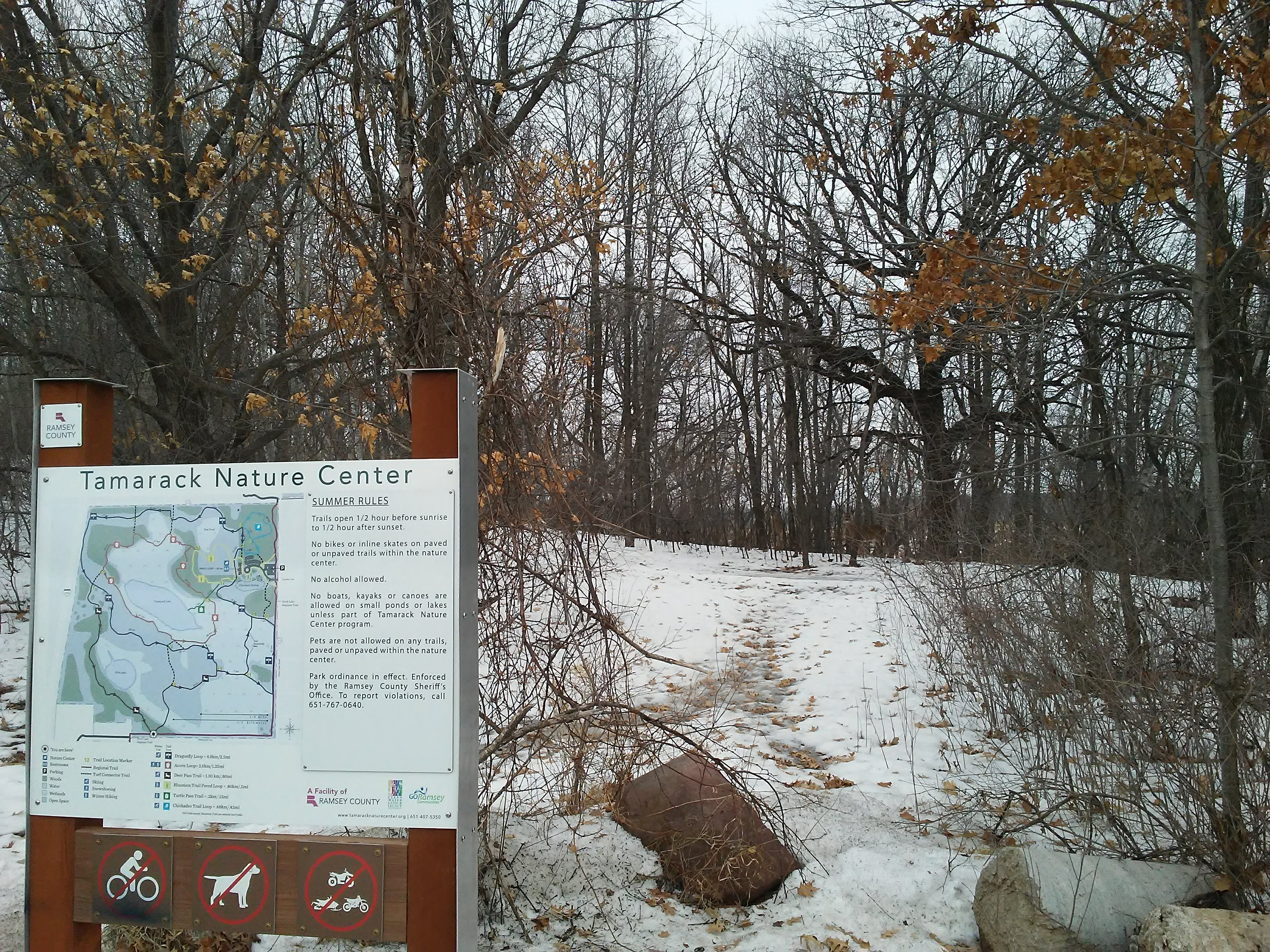 Park sign and snow and deer and trees