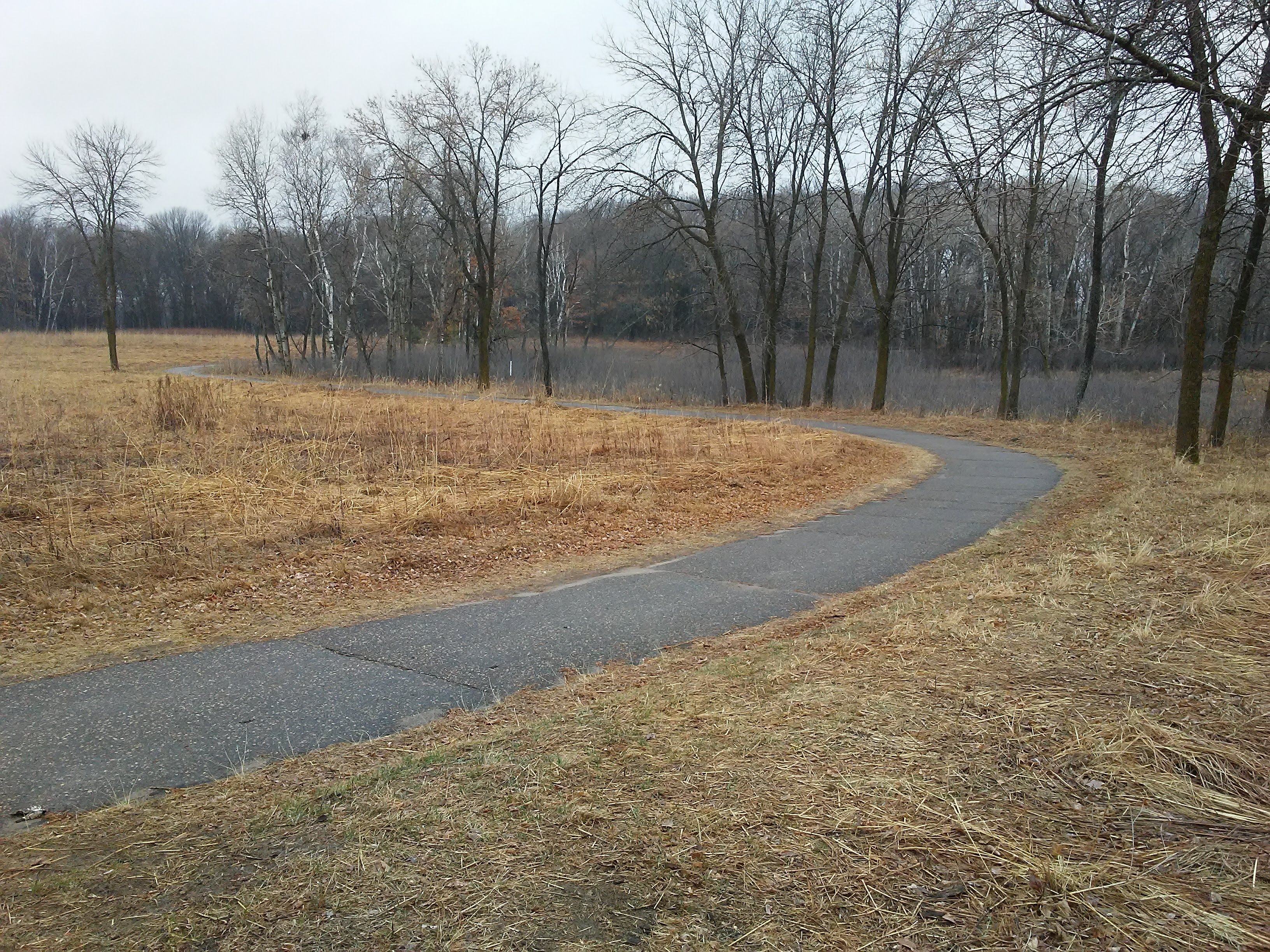 paved trail winding toward toward trees in background in early spring
