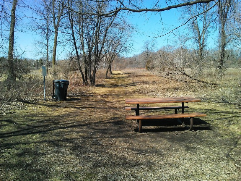 picnic table, garbage can, and trees