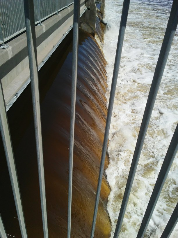 bars in front of a dam