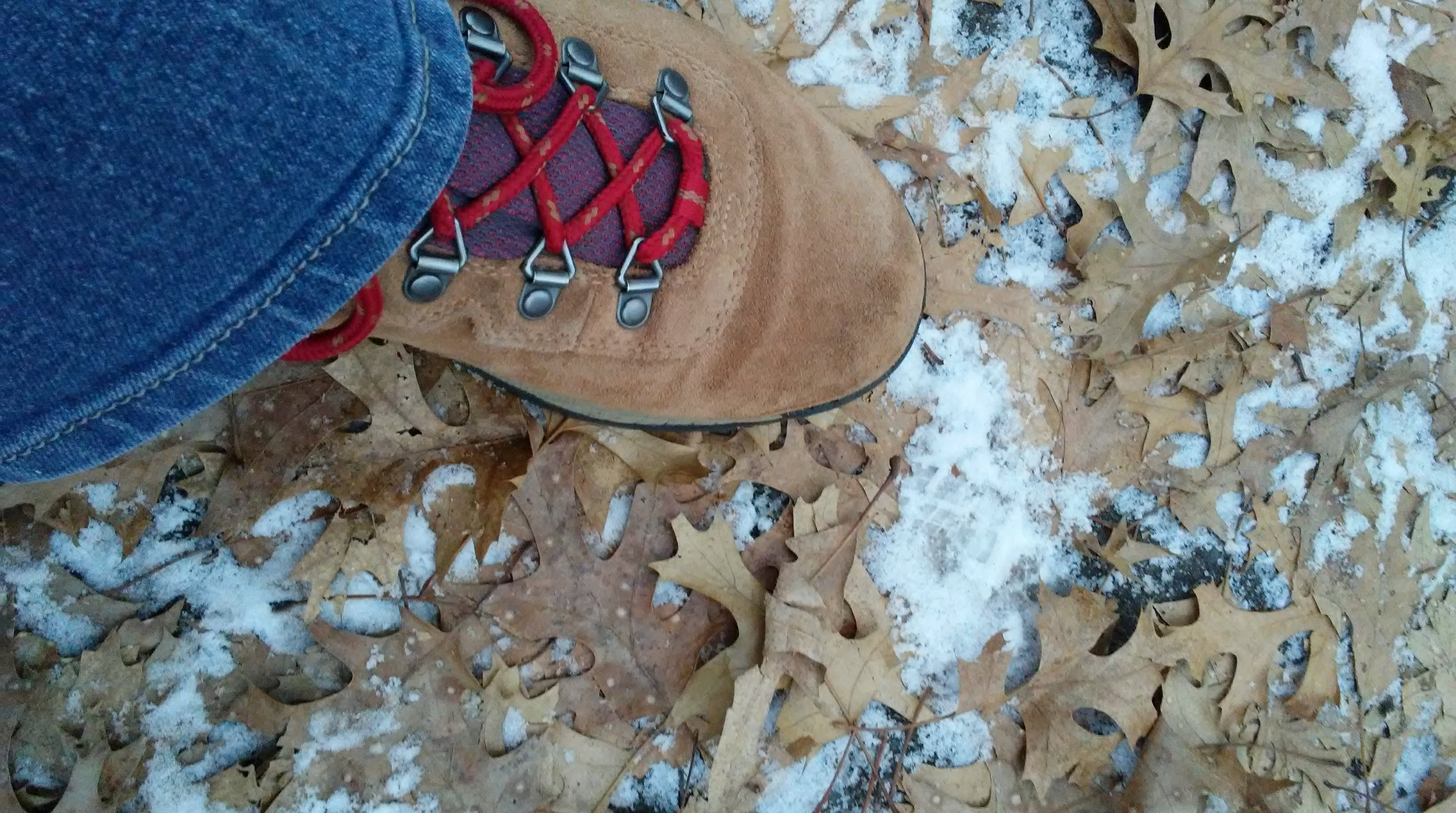 hiking boot, blue jean hem, leaves, snow