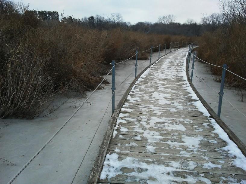 Boardwalk with railings. snow on ground. wetland.