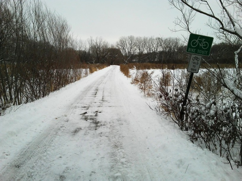 snowy trail through an wetland. street sign says bike route. another sign says yield to peds.