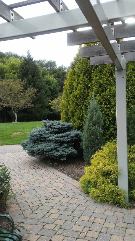 rectangular paving stones, shrubbery, a gray post holding up criss crossed beams.