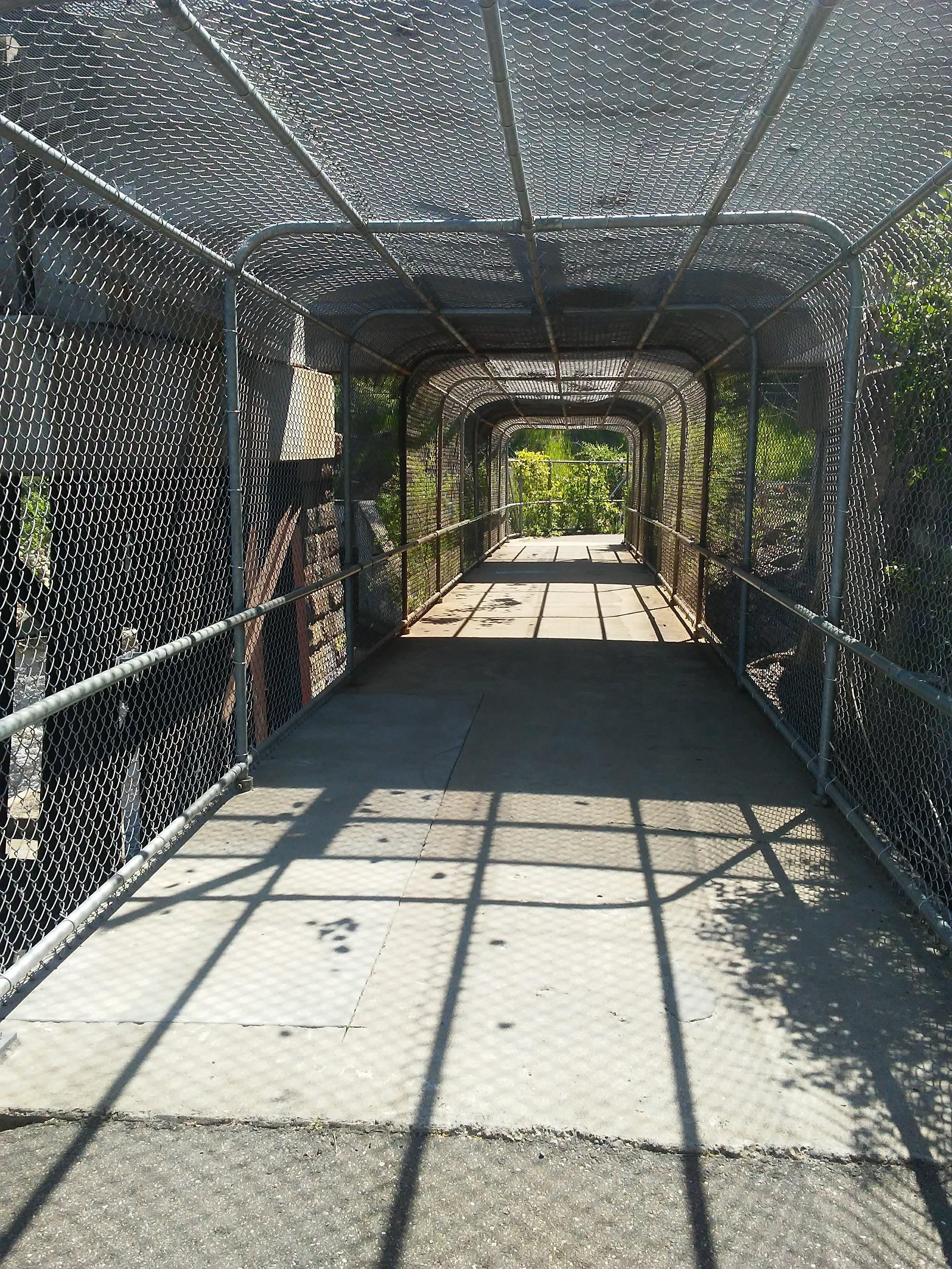 chain link fence tunnel around a bike path