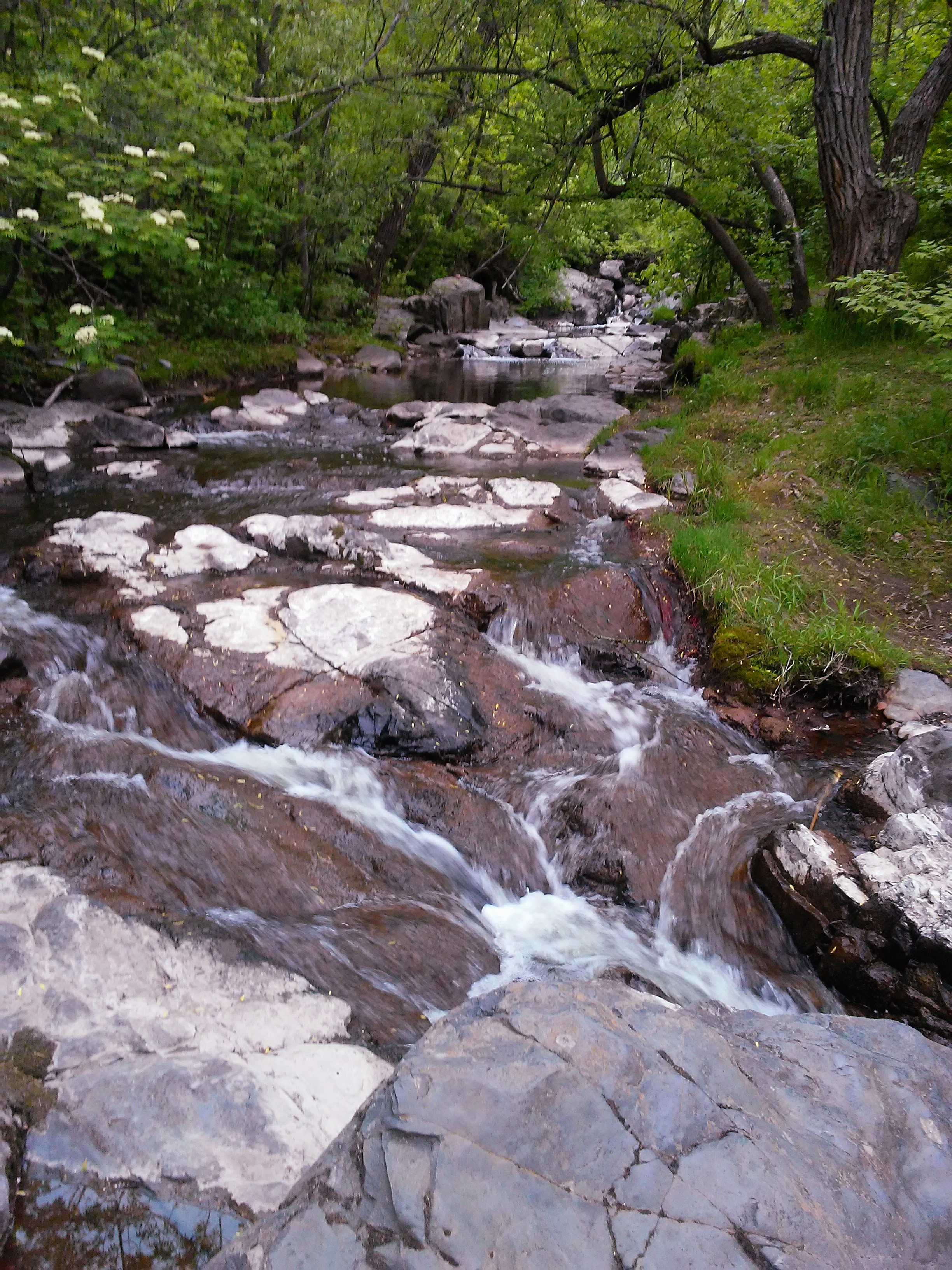 stream over rocks in the woods
