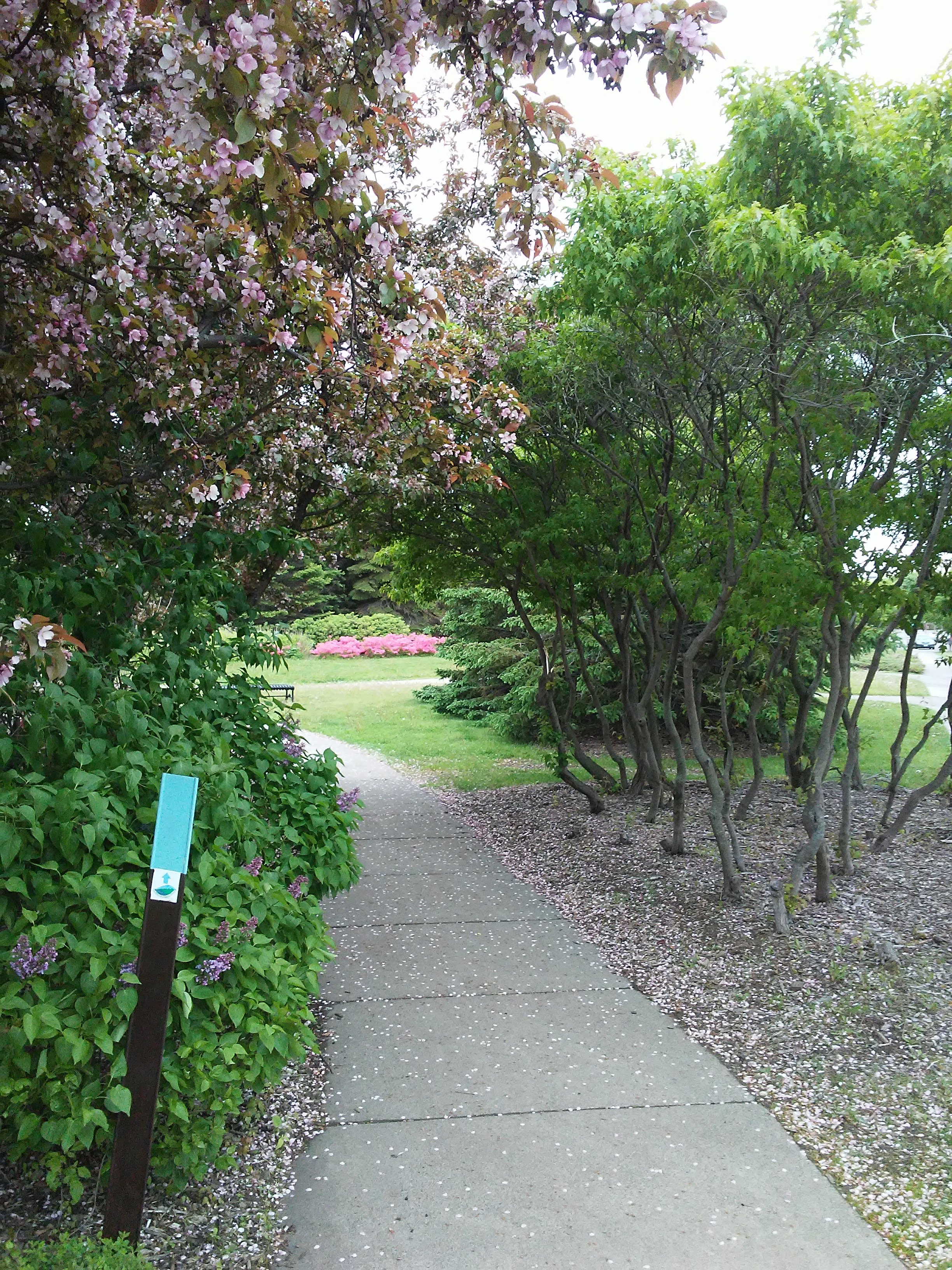 Superior Hiking Trail sign and a sidewalk leading into the Rose Garden in Duluth, Minnesota