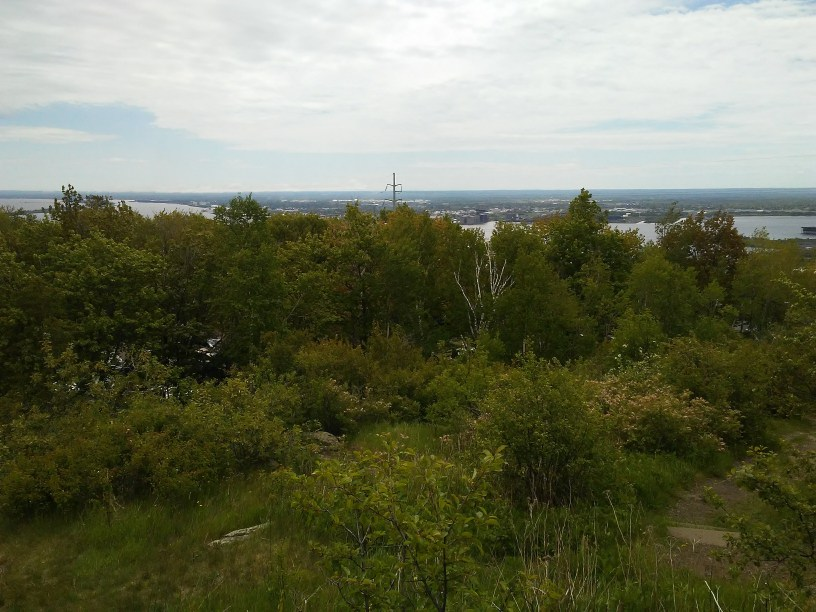 View of Duluth, Minnesota from the hill leading up to Enger Park. Lots of trees and a little bit of Lake Superior and Wisconsin on the other side of the bay