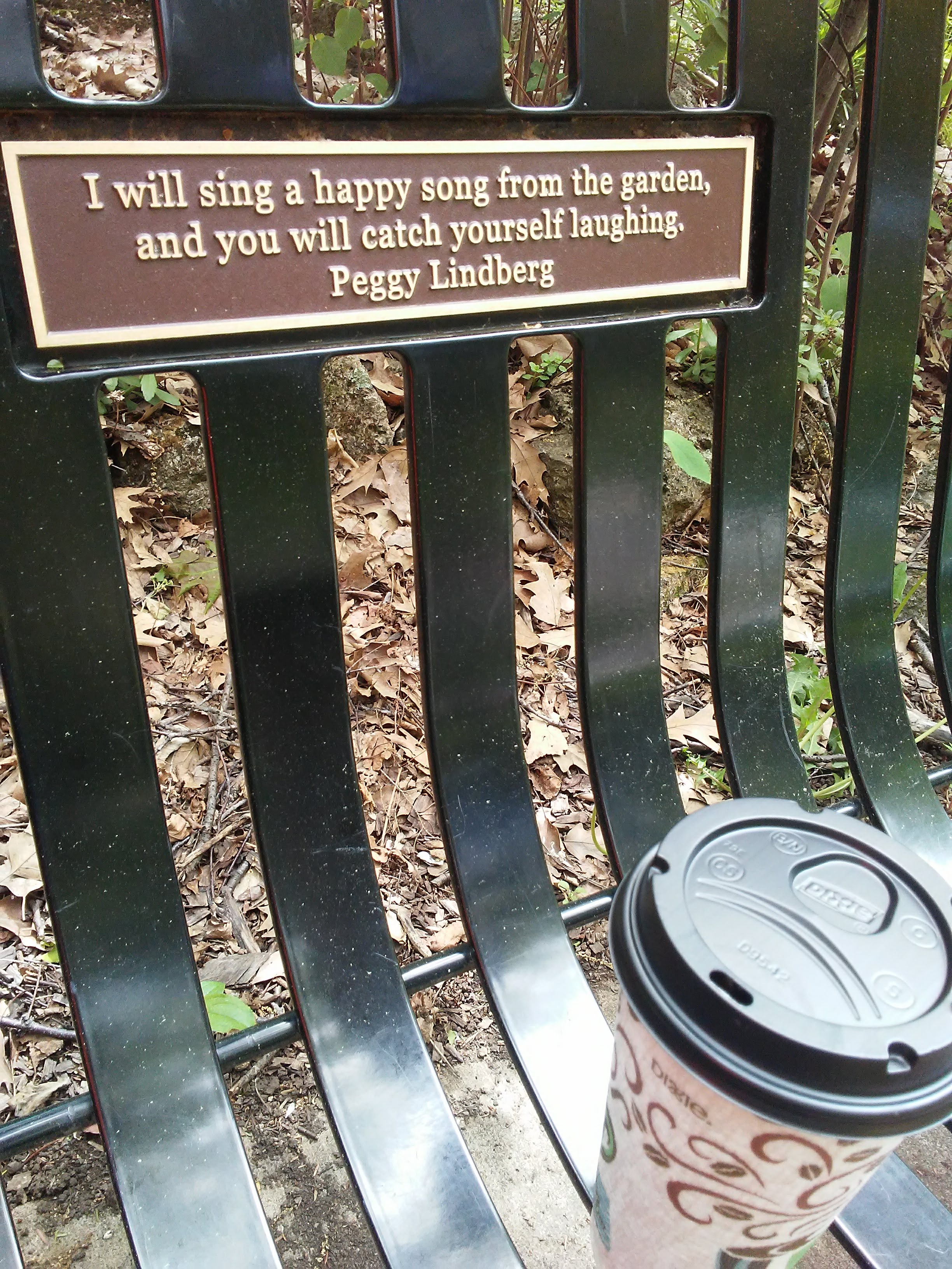 park bench with a quote and a take out coffee cup