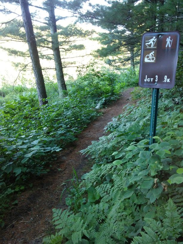 path in the woods with a state park sign