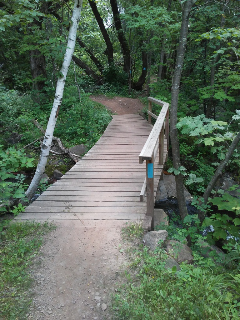 wood footbridge on a forested trail