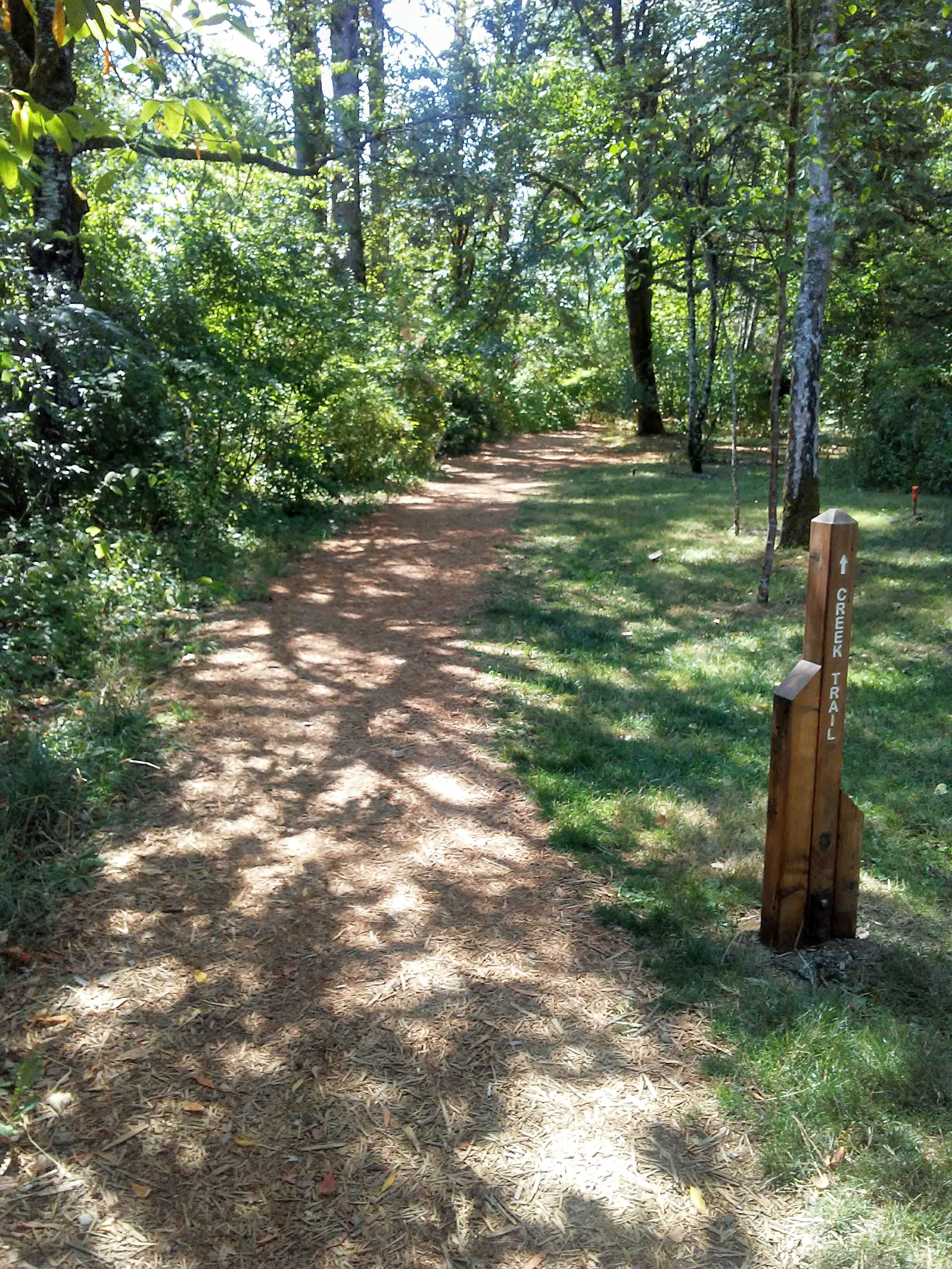 "a path in the woods and a post with the words, ""Creek Trail"""