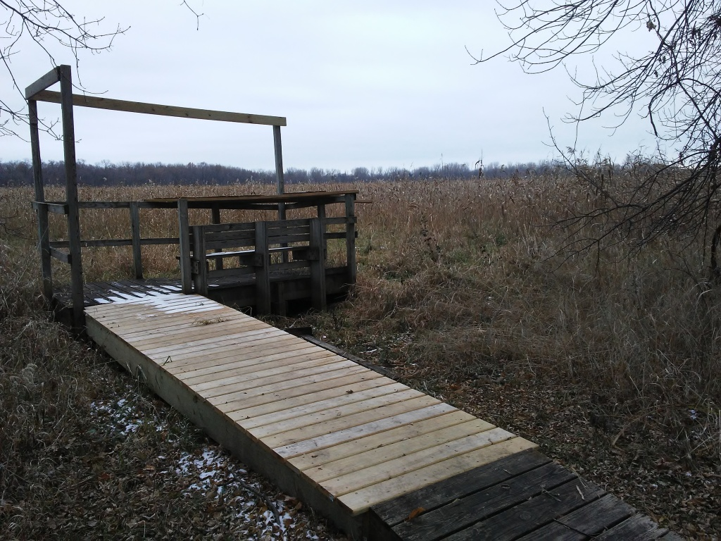 observation deck in a wetland