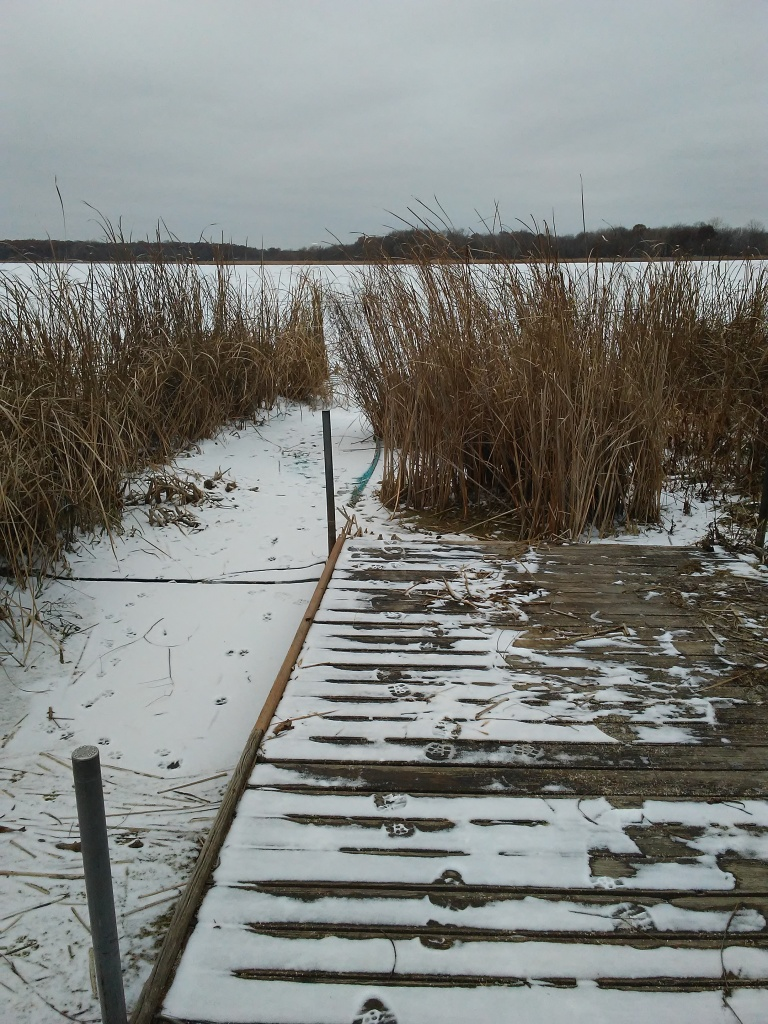 wetland in winter and a dock