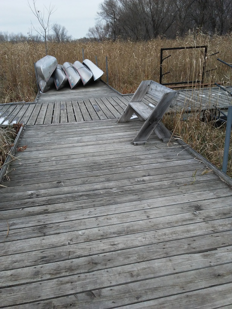 wood dock in a wetland, a bench, and canoes.
