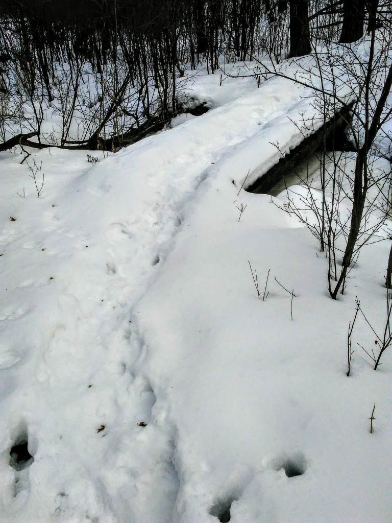 bridge over a small stream in winter. footprints in the snow.