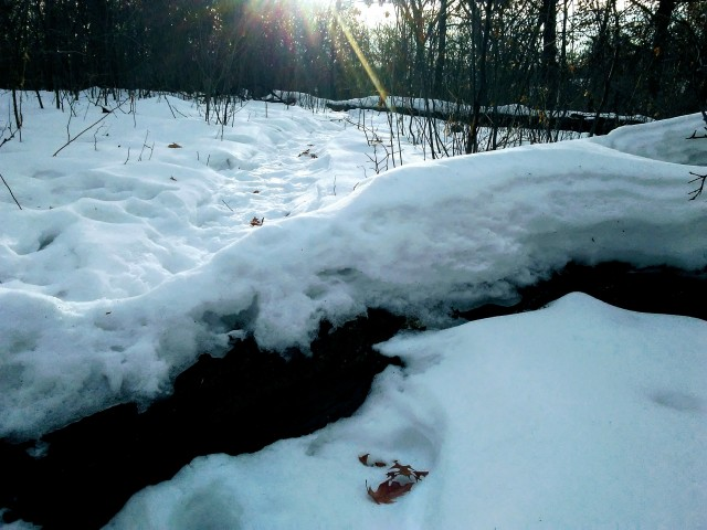 sunshine on snow