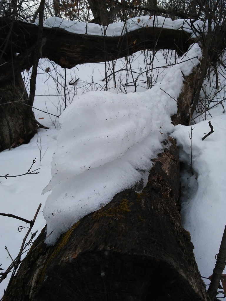 snow from multiple snowfalls on a log partially melted