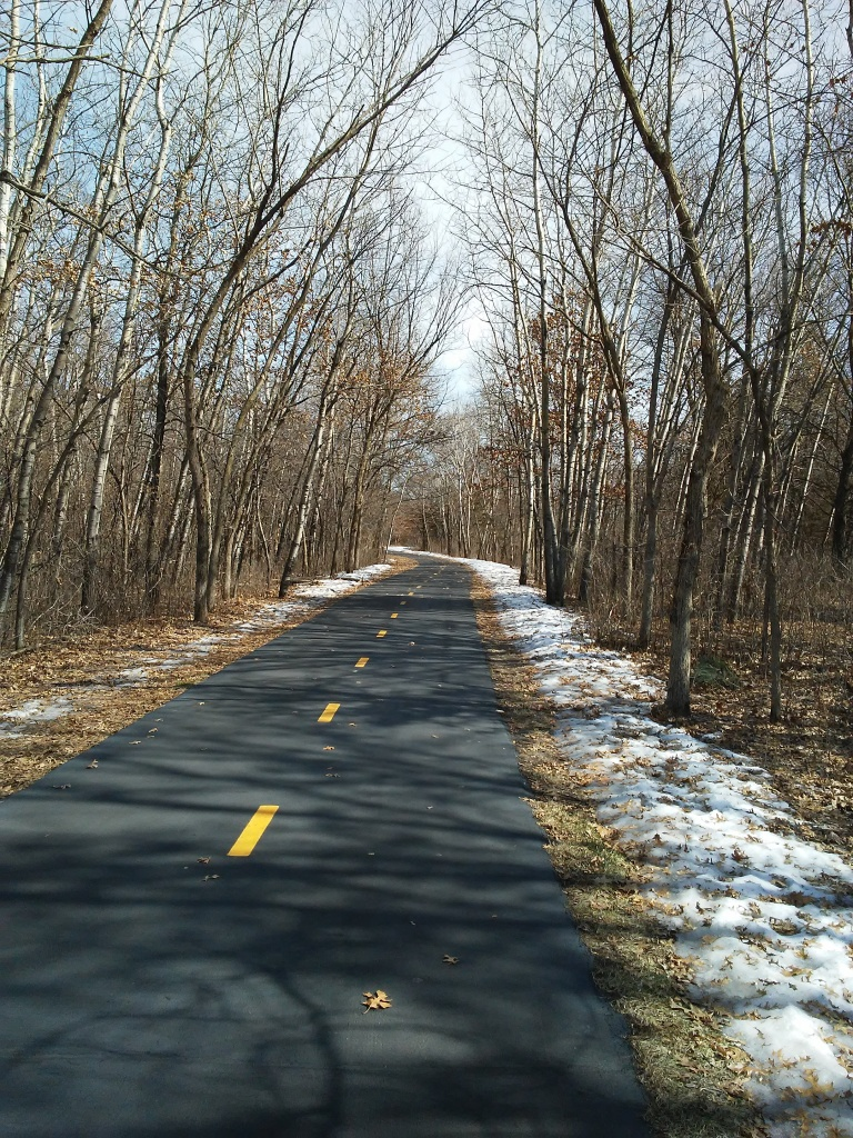 tree-lined bike trail in early spring