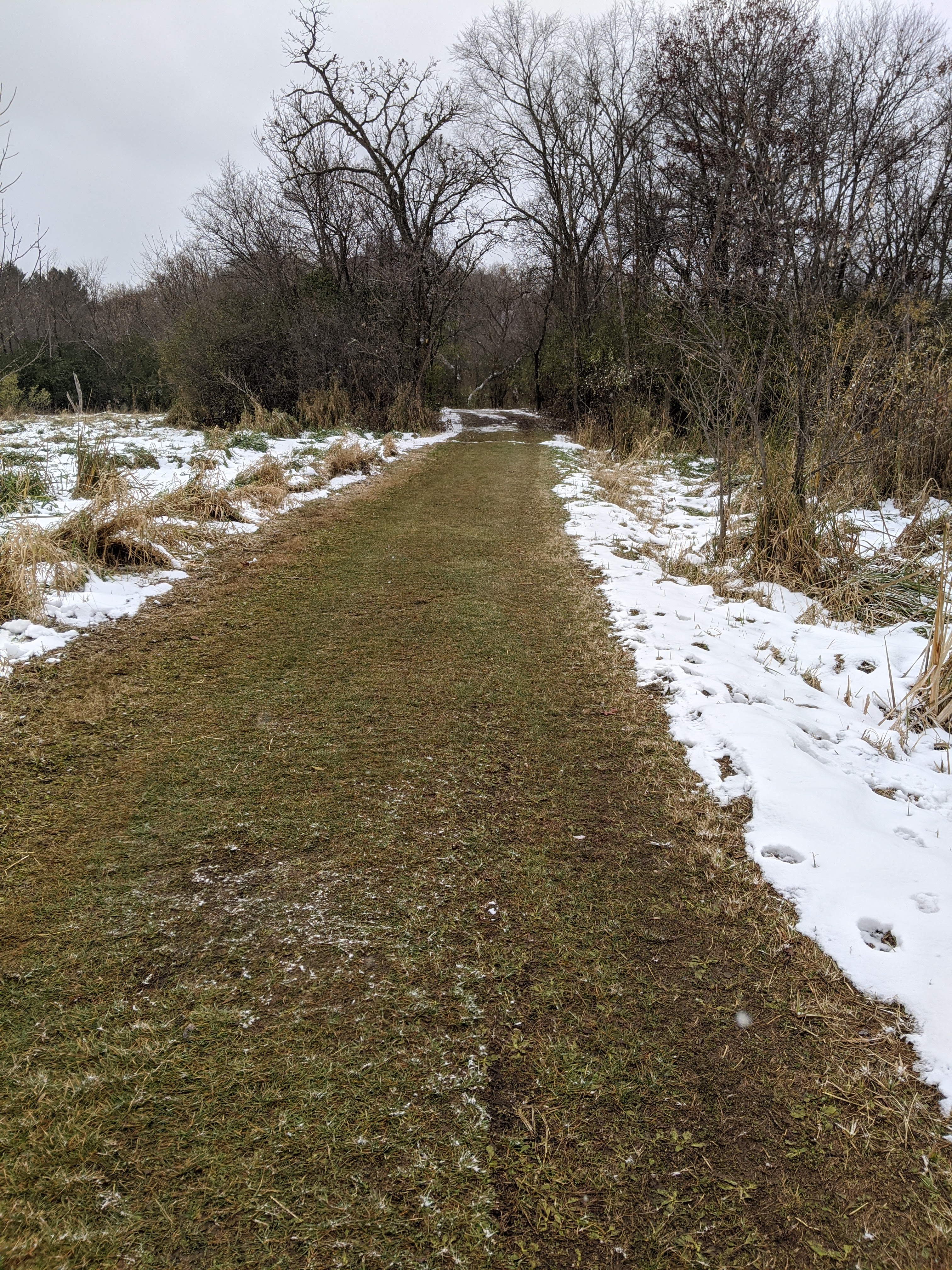 These trails are for cross country skis in the winter.
